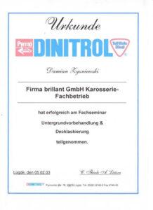 Zertifikat Dinitrol Damian Zyzniewski